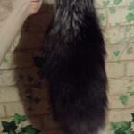 брелок лисий хвост